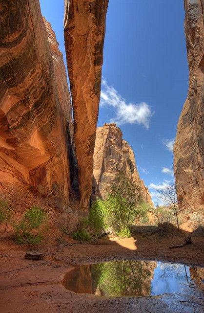 Bill Canyon